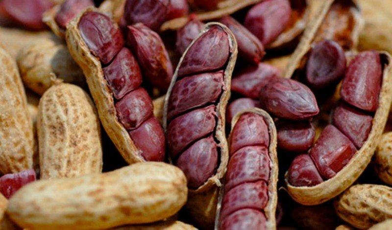 blog amendoin easy resize com