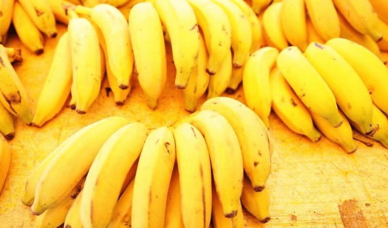 blog bananas